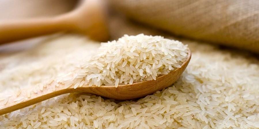 انتقاد نماینده نور از واردات بی رویه برنج