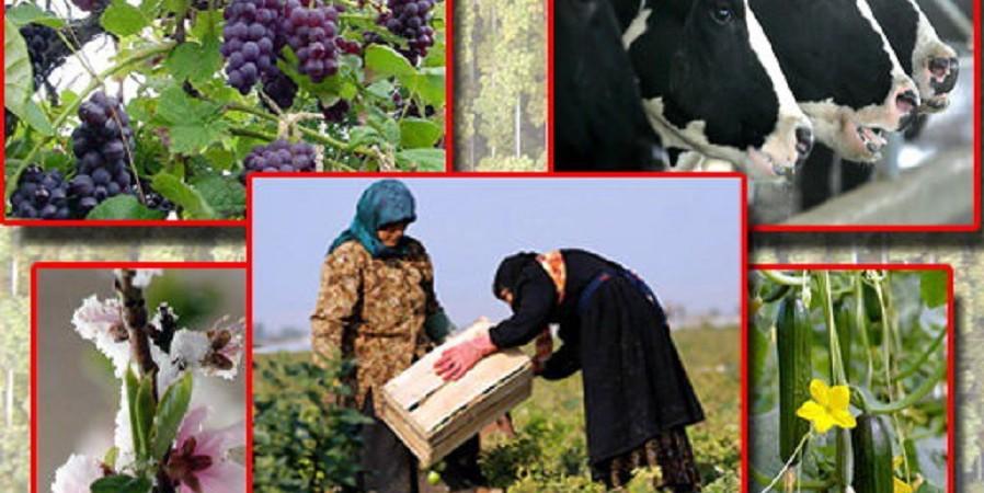 ۱۸۳ میلیارد تومان از جرایم وام کشاورزان بخشیده شد
