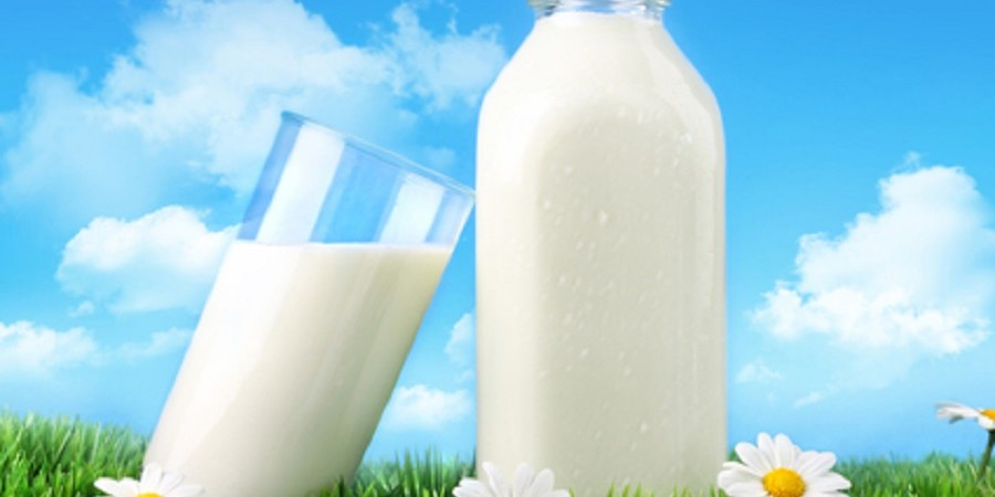 واردات ماده اولیه شیرخشک آزاد شد نه شیرخشک