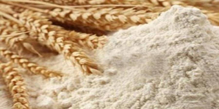 کاوه زرگران : گندم روسی در ایران تبدیل به آرد و به عراق صادر می شود