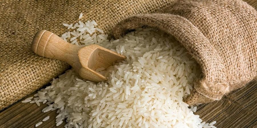 معاون وزیر جهاد کشاورزی خبر داد: واردات ۹۹ هزار تن برنج به کشور