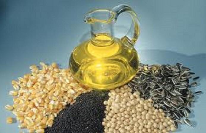 صرفه جویی ۴۵۰ میلیون دلاری واردات دانههای روغنی با افزایش تولید داخل