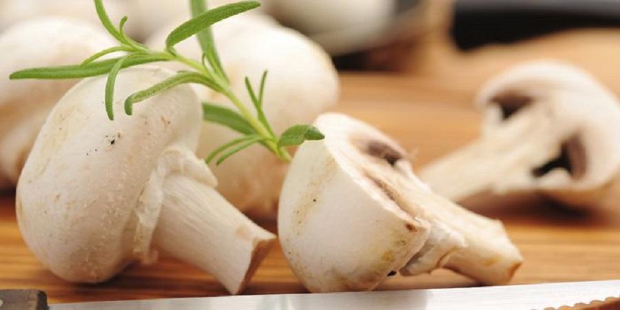 سرانه مصرف قارچ خوراکی در کشور پائین است