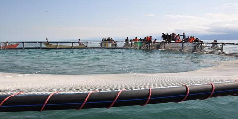 پروژه تولید تور پرورش ماهی در قفس تجاریسازی شد
