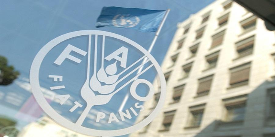 شاخص قیمت غذای فائو در ماه اوت ثابت ماند