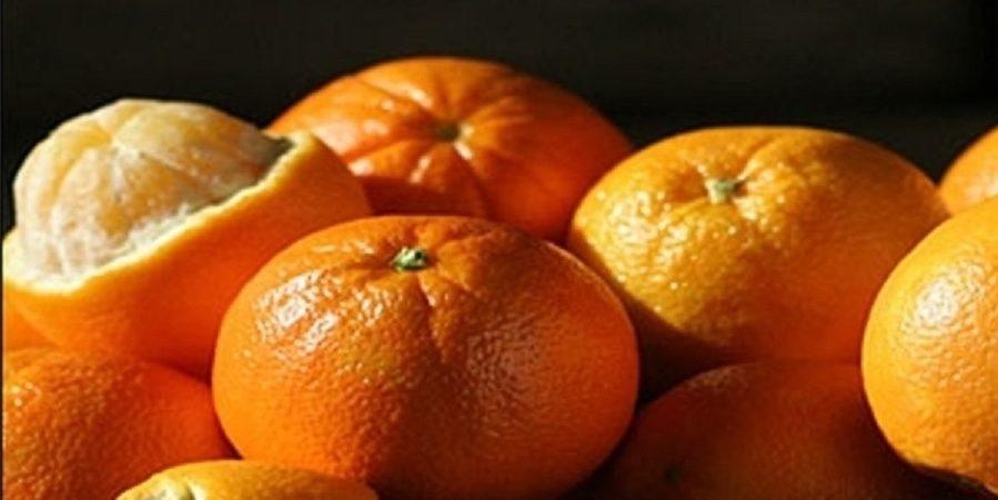 صنایع تبدیلی نیاز ضروری بخش کشاورزی در شرق مازندران