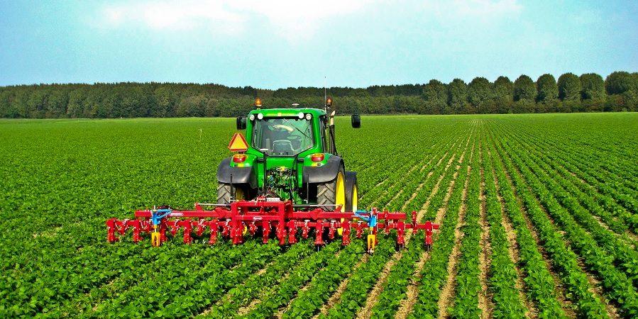 کشاورزی باید شغل اصلی کشاورزان باشد