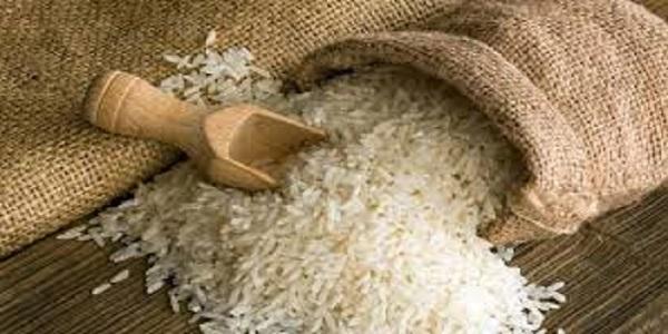 رونمایی از برنج هسته ای در مازندران