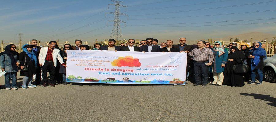 به مناسبت روز جهانی غذا برنامه پیاده روی و صبحانه سلامت با همکاری جامعه مسئولین فنی صنایع غذایی، آرایشی و بهداشتی کشور و سازمان غذا و دارو در پارک پردیسان برگزار شد
