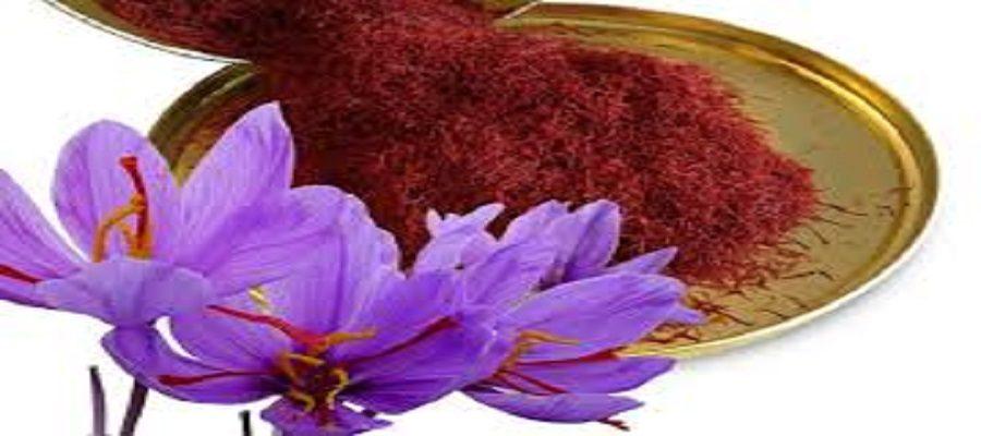 کمک فائو به ایران برای ایجاد ارزش افزوده زعفران