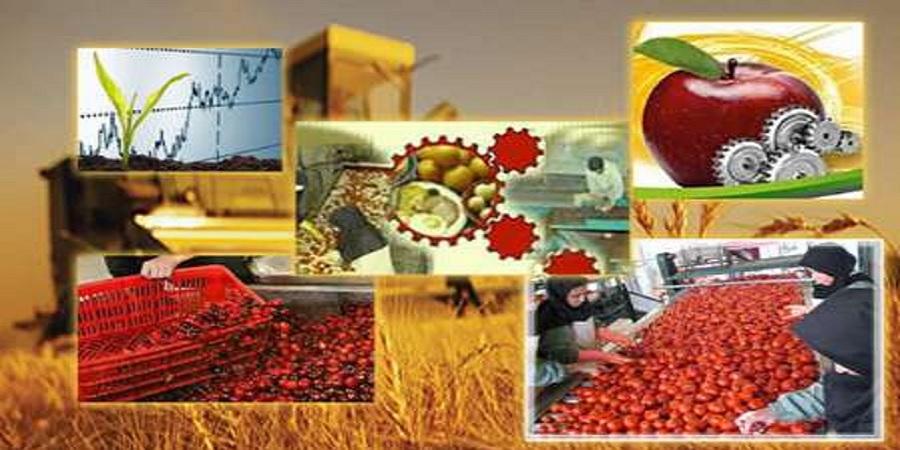 آمادگی ایران برای کشت فراسرزمینی و ساخت ماشین آلات کشاورزی به مقامات جمهوری آذربایجان اعلام شد