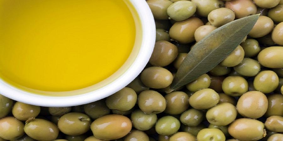 زیتون ۶۰ درصد گران شد/ افزایش ۱۲درصدی قیمت روغن زیتون
