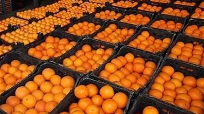 پرتقال ۲۰۰۰ تومان شد+ جدول قیمت انواع میوه