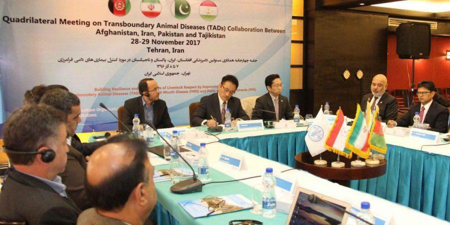 ایران، افغانستان، پاکستان و تاجیکستان در نشست بیماری های دامی فائو شرکت کردند