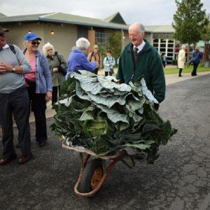 کشاورز سالخورده انگلیسی، الهام بخش جویندگان کشاورزی شگفت انگیز+ تصاویر