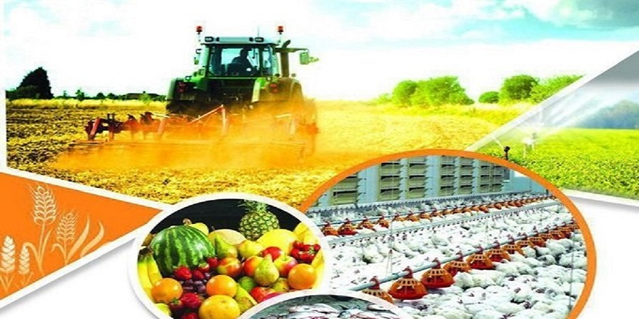 در ۹ ماهه امسال رقم خورد؛ارزآوری ۴.۵ میلیارد دلاری صادرات محصولات کشاورزی