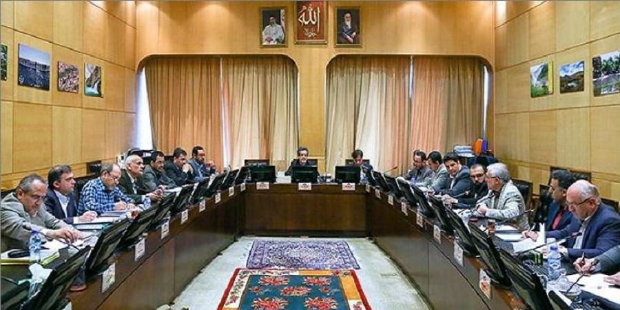 رئیس کمیته دام و طیور مجلس:افزایش قیمت نهادههای دامی منطقی نیست