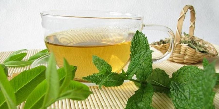 در روزهای گرم چای نعناع بنوشید