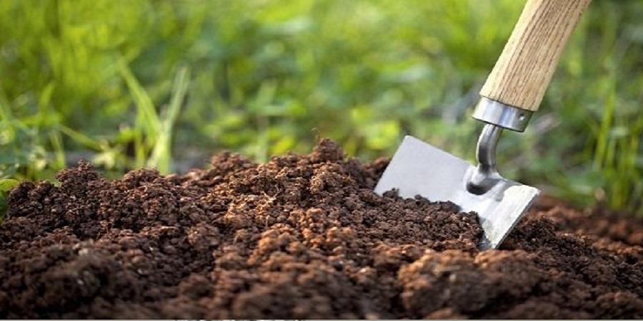 طی امسال صورت میگیرد؛ اجرای طرحی برای افزایش سهم کود زیستی در کشاورزی