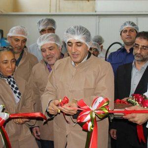 راه اندازی خط تولید شیر شیشه ای در پگاه تهران با همت کارشناسان داخلی در سال حمایت از کالای ایرانی+گزارش تصویری