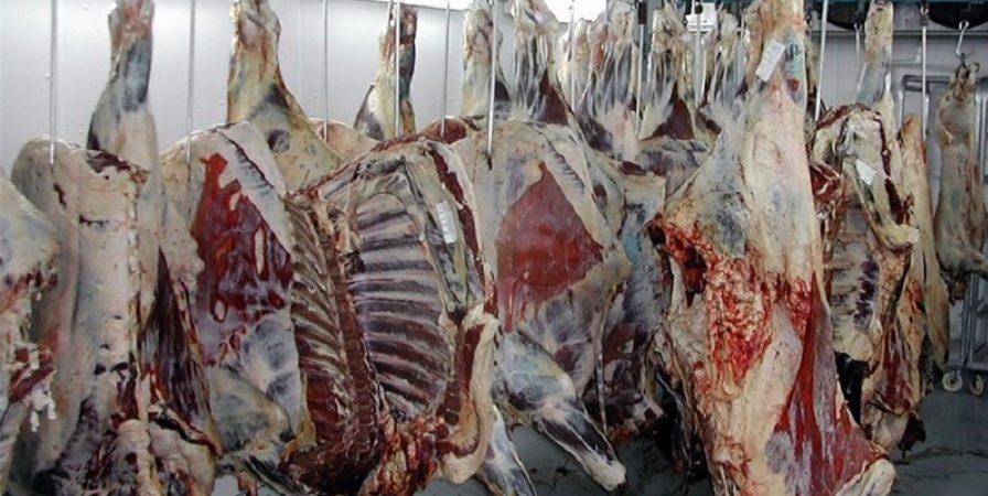 گرانی گوشت ربطی به قاچاق ندارد/ 2 راهکار برای کنترل بازار