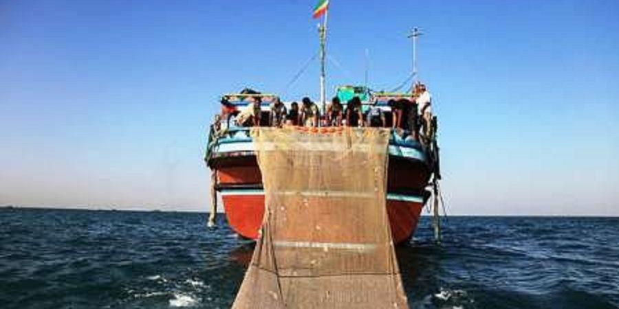 معاون سازمان بنادر: کشتیهای ماهیگیری چینی ضوابط را رعایت نکنند، توقیفشان میکنیم