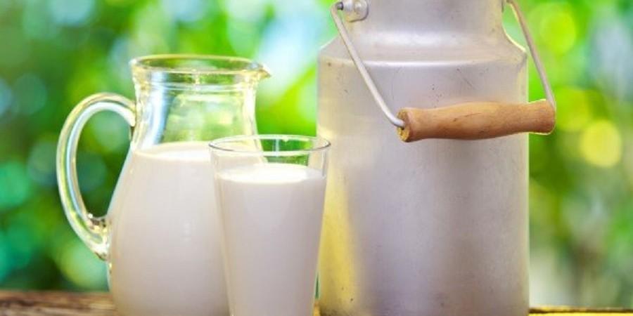 دوئل شریعتمداری و دامداران/تولیدکنندگان شیر دست به دامن حجتی شدند