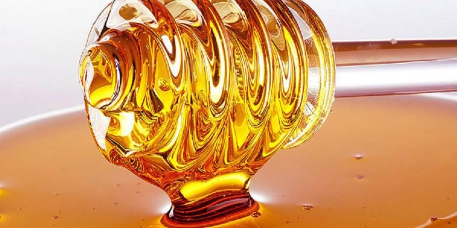 مدیرعامل صندوق حمایت از توسعه زنبورداری: آغاز خرید تضمینی عسل و ژل رویال از سال آینده