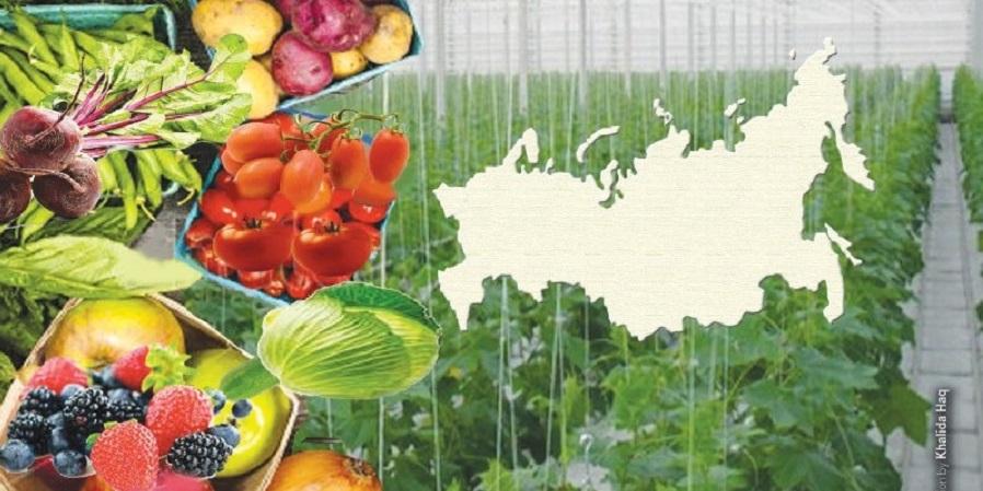 رکوردزنی جدید روسیه در صادرات مواد غذایی