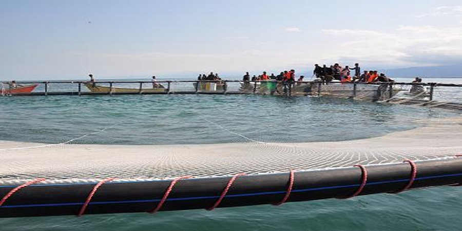 پیشرفت ۶۰ درصدی پروژه پرورش ماهی در قشم