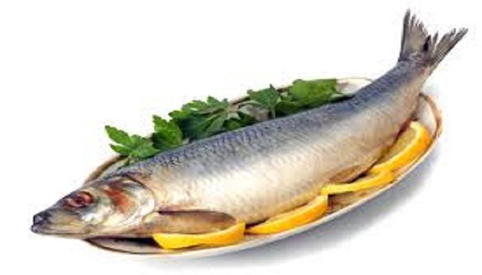 سرانه مصرف ماهی در ایران ۱۰ کیلوگرم، در کشورهای توسعه یافته ۳۰ کیلوگرم