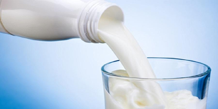 مدیر تحقیقات تغذیه انستیتو تحقیقات تغذیهای: دغدغه روغن پالم افزوده بر شیر را نداشته باشیم