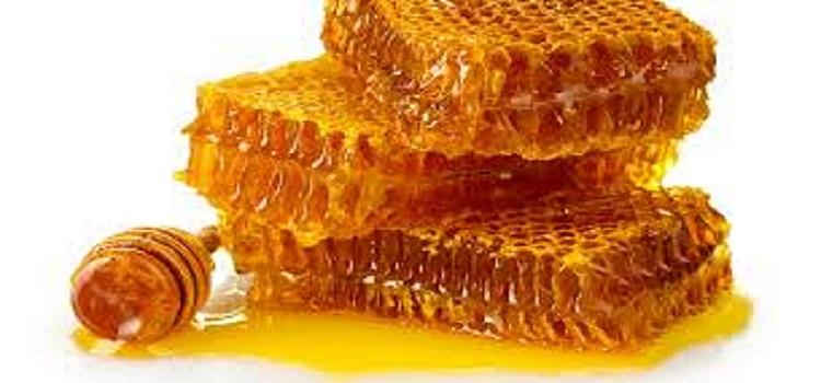 صادرات عسل صفر شد/دو تکه شدن بخش تولید با تعلیق اجرای قانون انتزاع