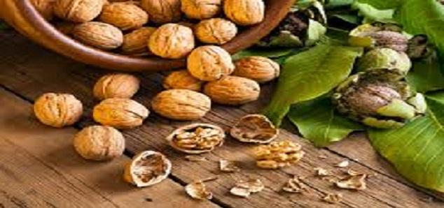 گردو برای سلامت باکتری های روده و قلب مفید است