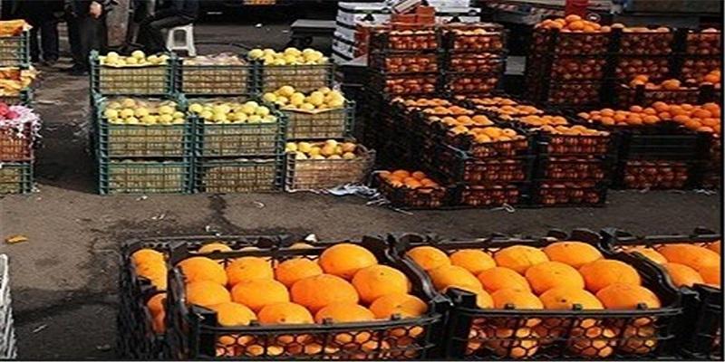راه اندازی مسیر صادرات میوه و تره بار به افغانستان