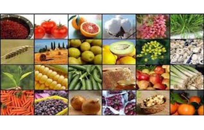 عرضه ۱۵۶ هزار تن محصولات کشاورزی در بورس کالا