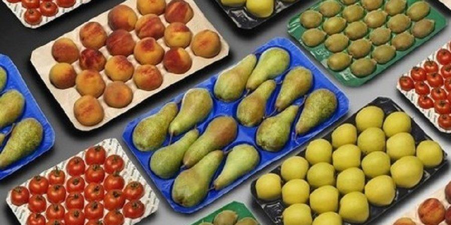 آغاز صادرات مستقیم میوه به عمان