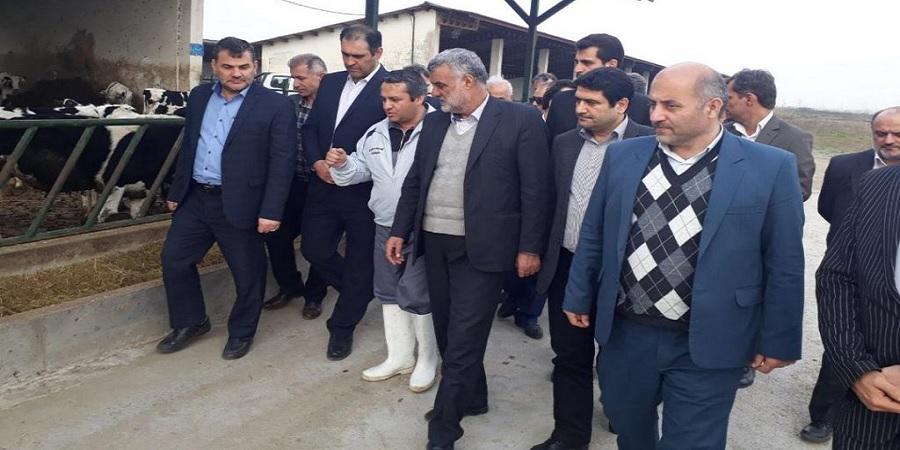 بازدید وزیر جهاد کشاورزی از مجتمع ٢٠٠٠ راسی پرواری کشت و صنعت و دامپروری پگاه در رشت