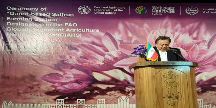 عضو هیئت نمایندگان اتاق ایران: ثبت جهانی زعفران به عنوان شالوده ای از بازاریابی مبتنی بر اصالت کالا می تواند مورد استفاده قرار گیرد