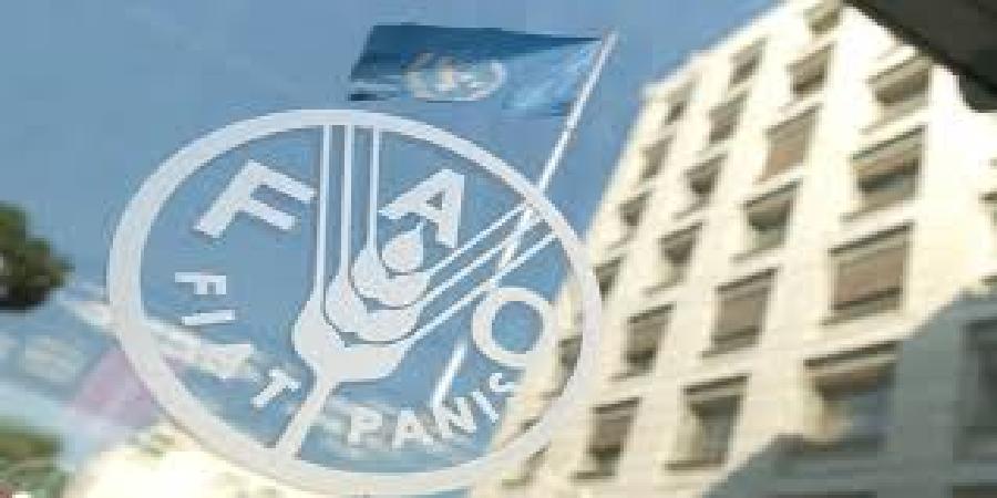 همکاری ایران و فائو در اجرای طرح ارتقای تابآوری کشاورزی