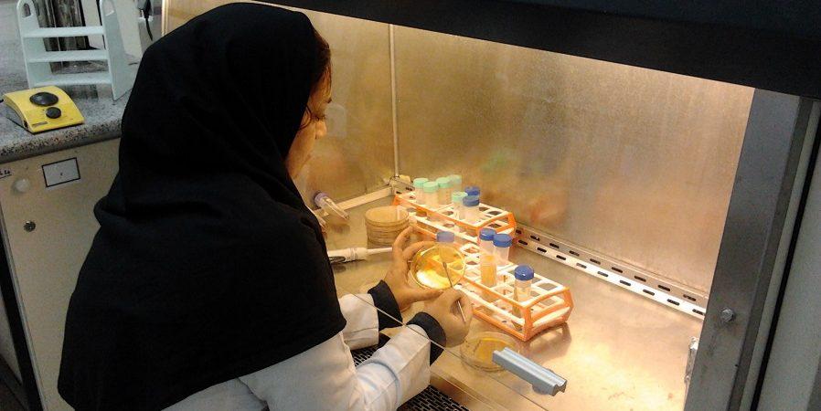 استخدام کارشناس آزمایشگاه در شرکت فرآورده های آردی و شیرینی جات