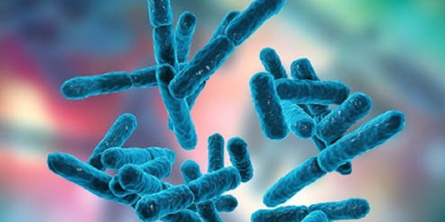 پروبیوتیک ها با تقویت سیستم ایمنی به پیشگیری از آلودگی کرونا ویروس کمک می کنند