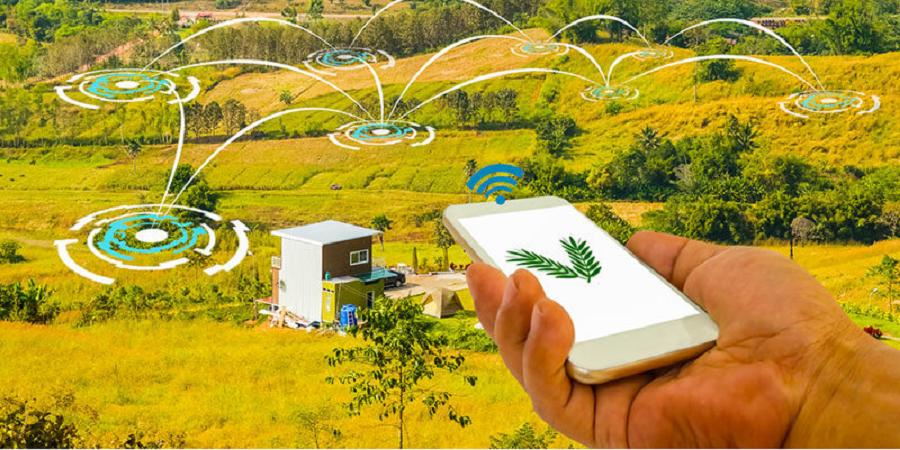 استارتاپهای حوزه کشاورزی صاحب انجمن صنفی میشوند/راهاندازی شهرک کسب وکارهای نوپا در کرج