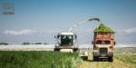 ایجاد تغییر در نگرش و مدیریت مزارع شیری کشور با پیادهسازی طرح «بهبود منابع آبی و مدیریت پساب» شرکت نستله