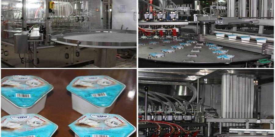 توان رقابتی «غفارس» در تولید پنیر ۳ برابر شد/راه اندازی خط تولید «پنیر الماسی» در پگاه فارس