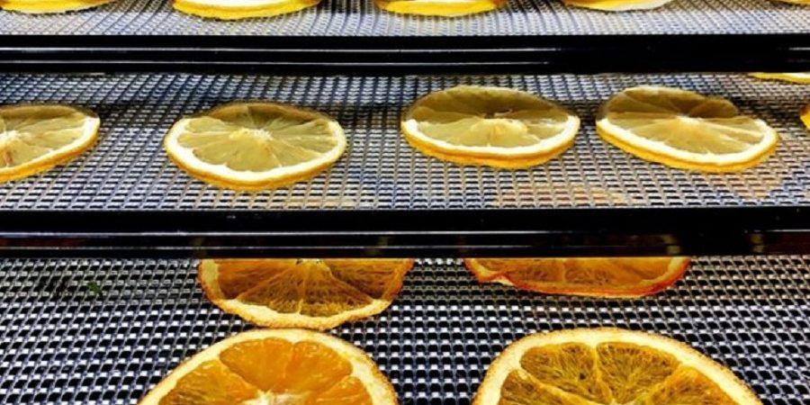 """انقلاب در صنعت خشک کردن میوهها با فناوری """"باد یونی"""""""
