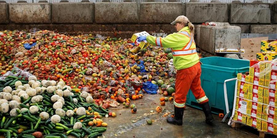 ۳۰ درصد غذا به سفره مردم نمی رسد/راهکار ترکیه برای جلوگیری از ضایعات غذایی