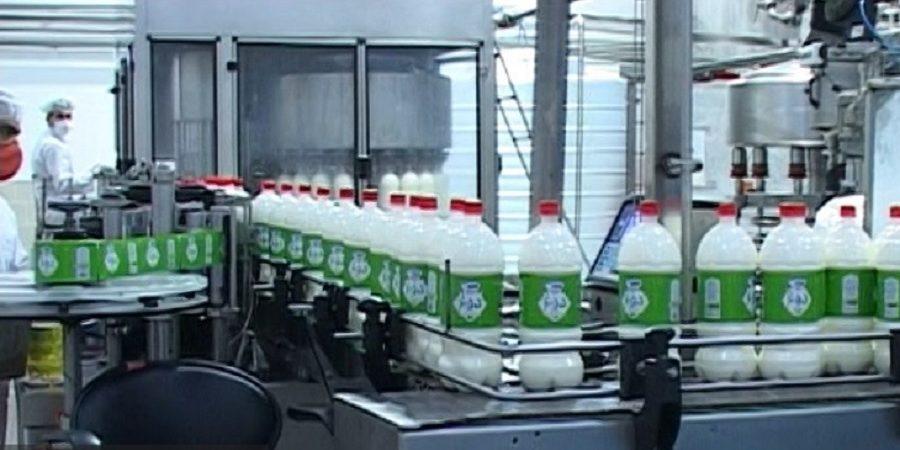 گلپایگان سرزمین لبنیات/بازار لبنیات گلپایگان در آنسوی مرزها+ویدئو